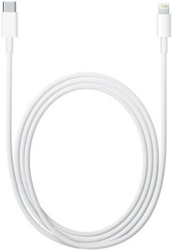 APPLE CAVO APPLE DA USB TYPE C ALIGHTNING